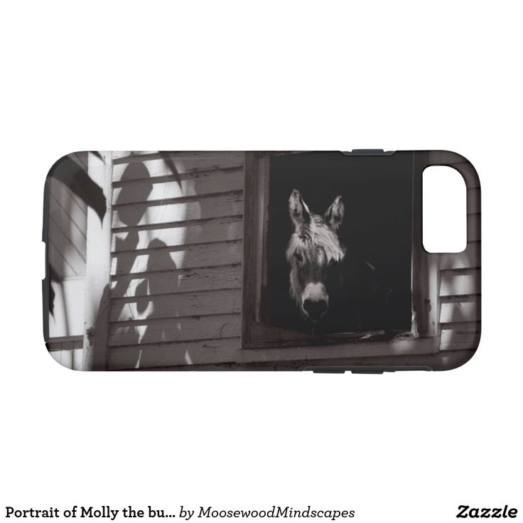 Portrait of Molly the burro Phone Case