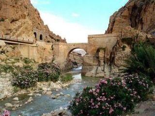La ville de Biskra . Algérie مدينة بسكرة بالجزائر Biskra City In Algeria __________________________________________________ #algérie#biskra#tourism_in_algeria#algeria#tunisia#lybia#mauritania#polisario#sudan#mauritania#egypt#saudiarabia#ksa#dubai#uae#qatar#kuwait#bahrain#oman#yemen#syraia#lebanon#palestine#jordan#iraq#turkey#istanbul#france#paris#canada#usa