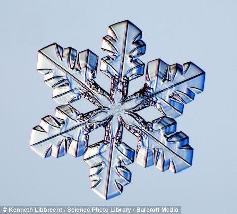 Hermosas fotos de copos de nieve y ¿cómo se forman?   Planeta Curioso