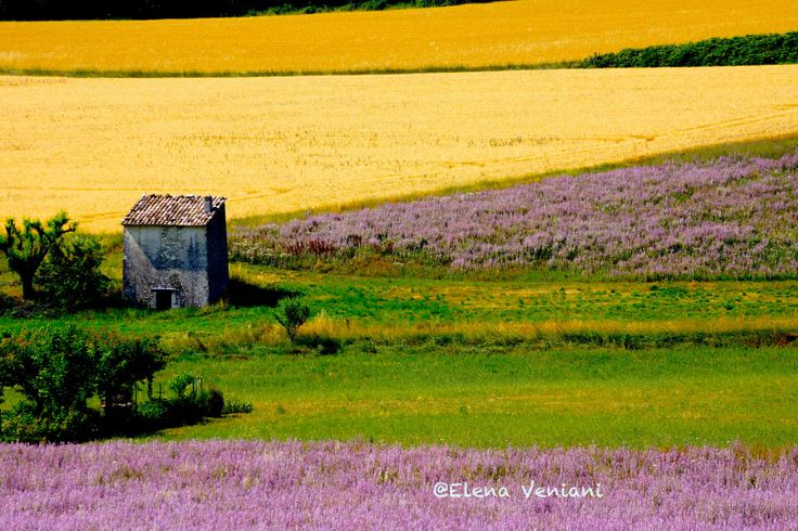 emotions love colors of provence