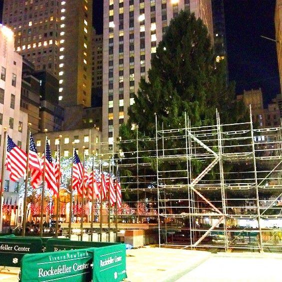 L'albero natalizio del Rockefeller Center