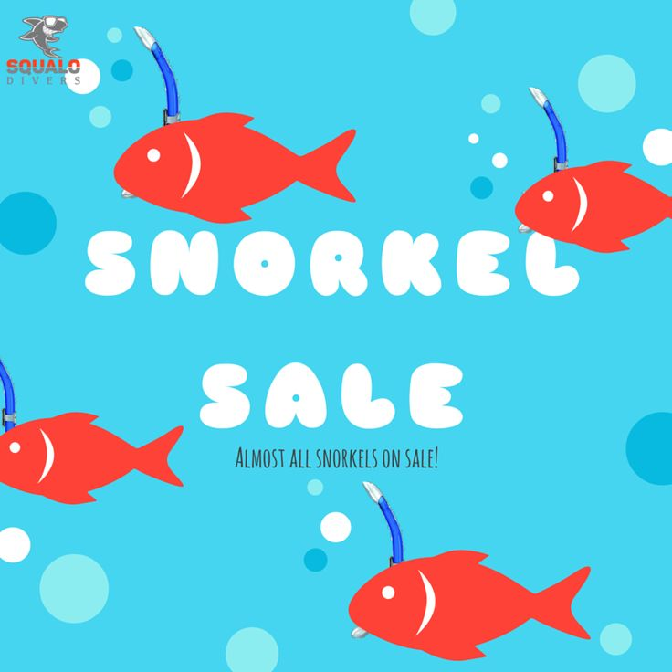 Missing some gear for this summer's dive??? Have no fear! Check out our website and see almost all our snorkels on sale!   #SqualoDivers #scuba #gear #onpoint #summer