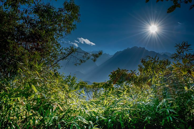 https://flic.kr/p/MDt5Tx | Forest, Mountains, Sun And Blue Sky (Machu Picchu, Peru. Gustavo Thomas © 2016) | Selva, Montañas, Sol y Cielo Azul / Forest, Mountains, Sun And Blue Sky  (Machu Picchu, Peru. #Photograph by Gustavo Thomas © 2016)