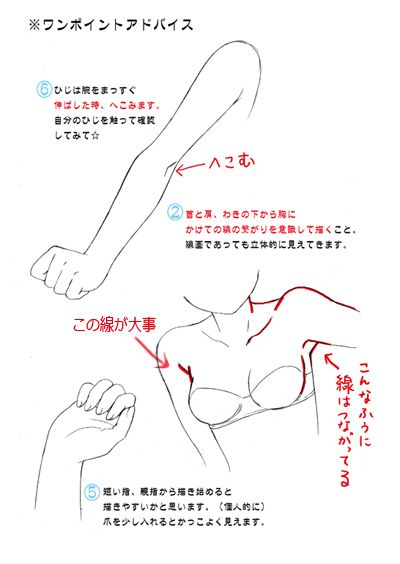 Reference - Female - Body