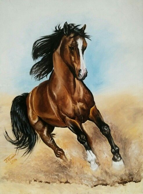 One of my paints: Running horse. Oil on Canvas, 18in x 24in.