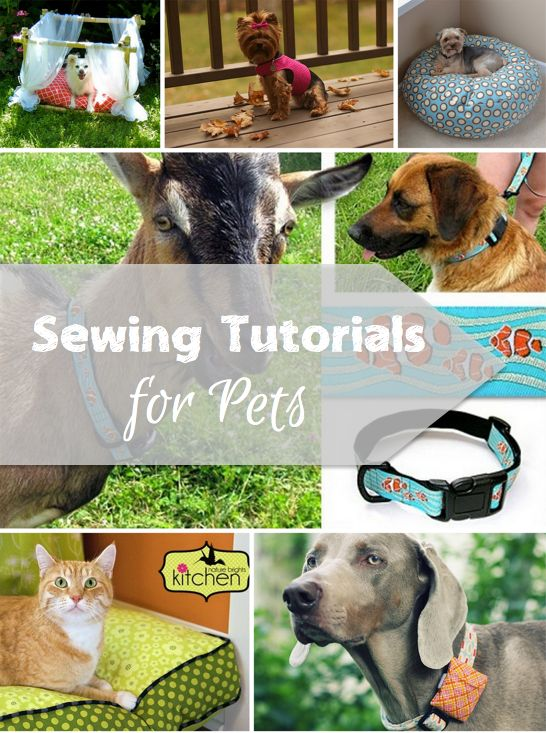 Sewing Gifts for Pets - Keep your furry friends on your gift list with some do it yourself handmade pet gift ideas
