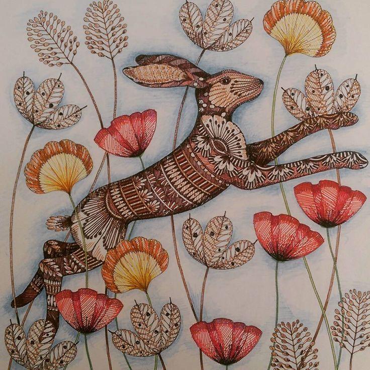 318 Best Millie Marottas Animal Kingdom Images On Pinterest