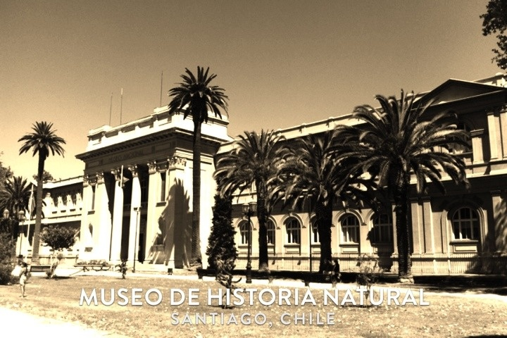 Museo de Historia Natural, Santiago, Chile.