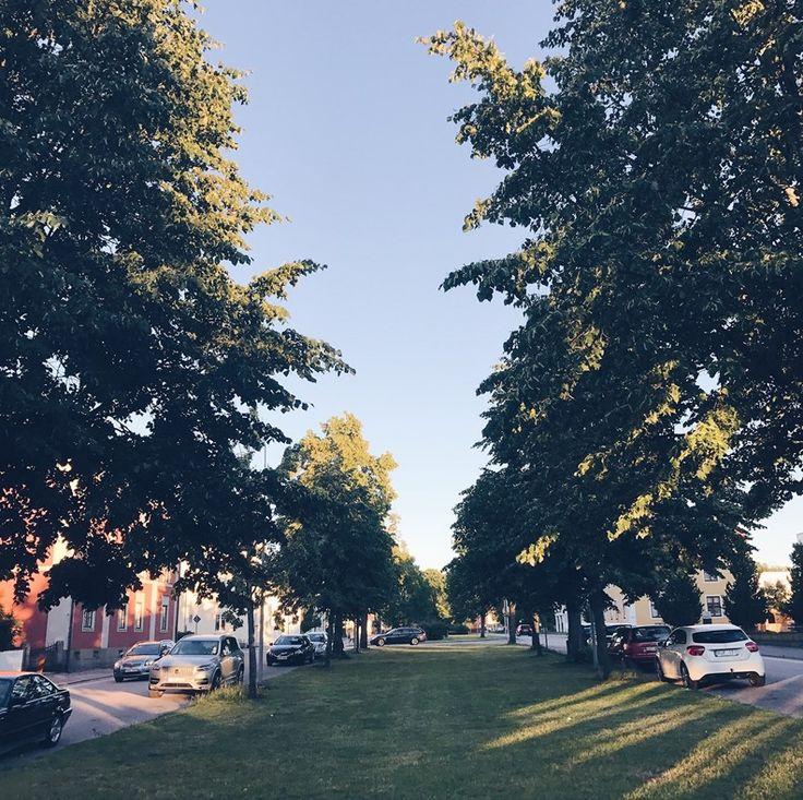 Walk trees blue sky evening dream cosy summer En Happy tjej Blogg