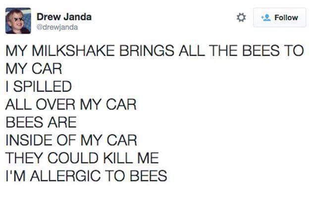 MY MILKSHAKE BRINGS ALL THE BEES TO MY CAR