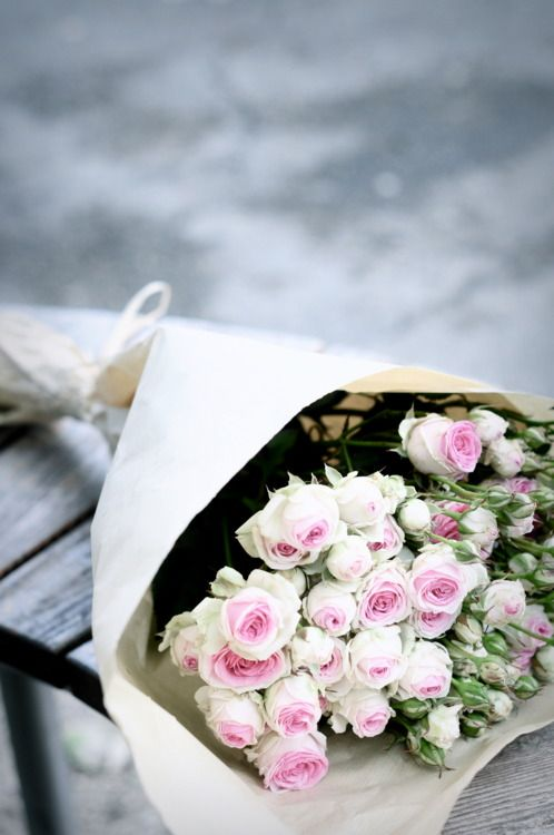Gorgeous: Pink Flowers, Pink Roses, White Rose, Pale Pink, Beautiful, Fresh Flowers, The Secret Gardens, Pretty, Pink Parties