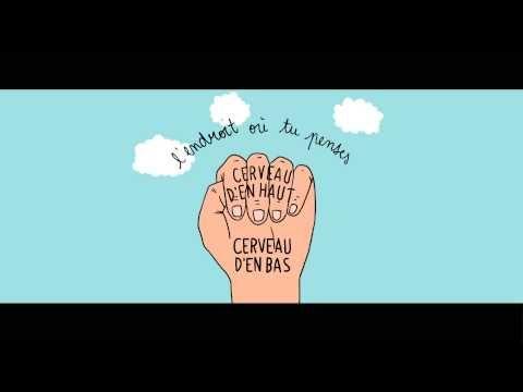 Le cerveau dans la main, une animation pour aider les enfants à gérer leurs émotions - YouTube