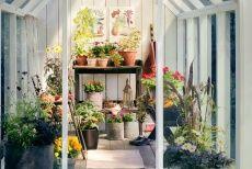 Blomsterfrämjandet/Elmia Garden