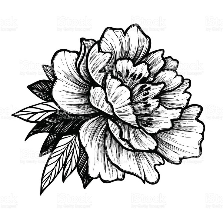 22 best single flower tattoo outlines images on pinterest for Single flower tattoo