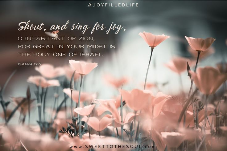 Isaiah 12:6 - Joy Filled Life from Sweet To the Soul