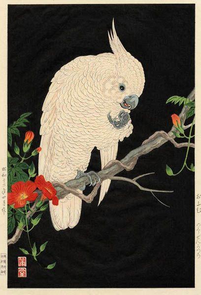 #cockatoo: Bags I D, Beautiful Cockatoo, Japanese Painting, Art Oriental, Arte Giapponese, Parrots Art, Asian Art, Art Dreams, Animal