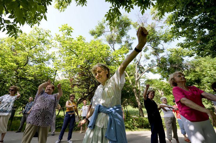 """O femeie face exerciţii în timpul programului de gimnastică în masă """"Bucura-te de primăvară, alege mişcarea în aer liber!"""", organizat de Primăria Sectorului 2 în Parcul Plumbuita din Bucureşti, luni, 20 mai 2013. (  Andreea Alexandru / Mediafax Foto  ) - See more at: http://zoom.mediafax.ro/people/viata-cotidiana-mai-2013-10933878#sthash.mMDLJrC1.dpuf"""