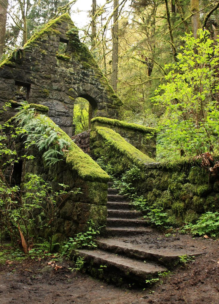 """The Witch's Castle - built in 1930s as a restroom and ranger station, abandoned in 1960s due to storm damage and vandalism - Forest Park, Portland, Oregon."""