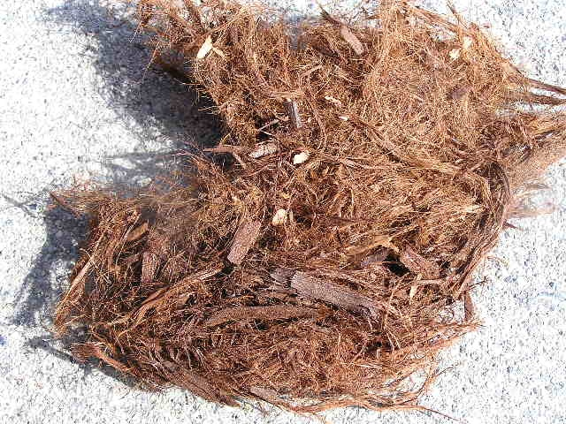 Shredded bark, sometimes known as 'gorilla hair' can mulch a hillside without slipping.