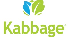 Kabbage Working Capital Review