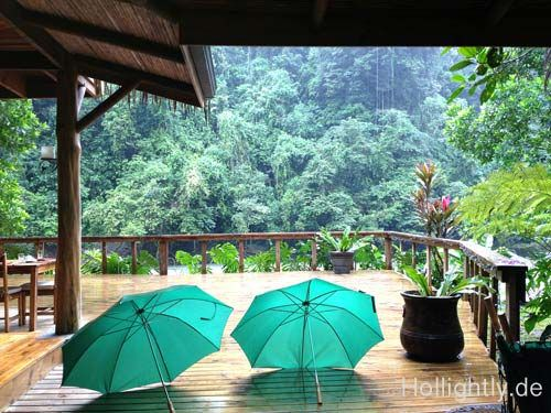 Rain in rainforrest Costa Rica