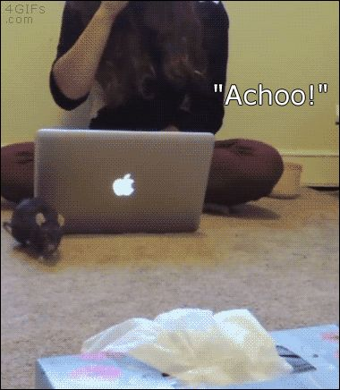 "4gifs: "" Pepper the rat learned to recognize sneezing. [video] """