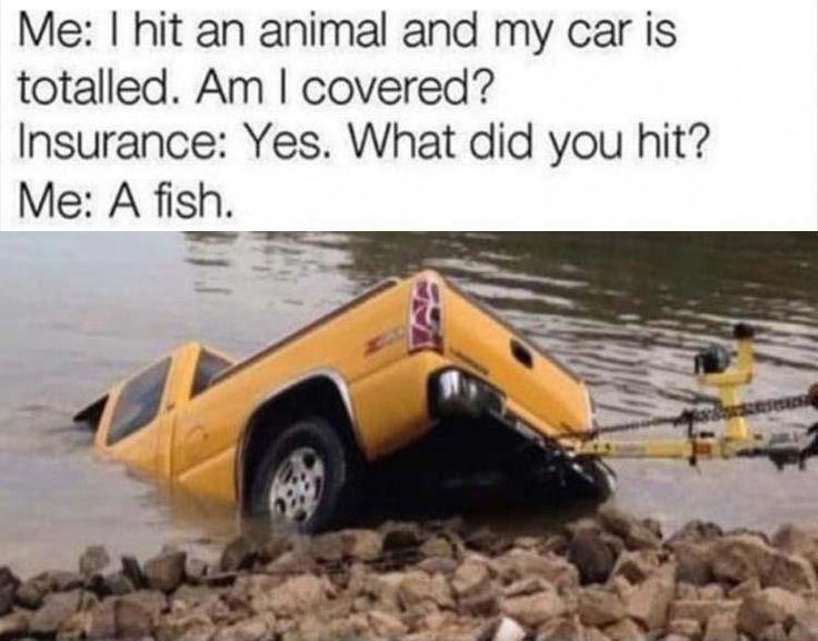 20 Really Funny Pictures & Memes! #bestfunnymemes