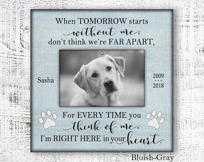 Personalized pet sympathy gift personalized pet memorial ...
