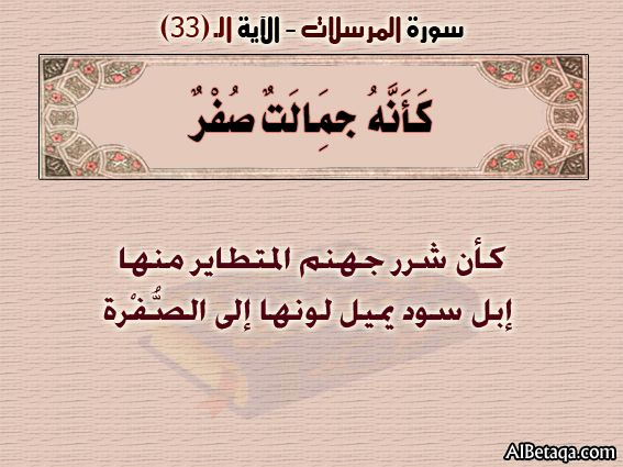 الآيه 33 سورة المرسلات التفسير المصور Calligraphy Arabic Calligraphy Social Security Card
