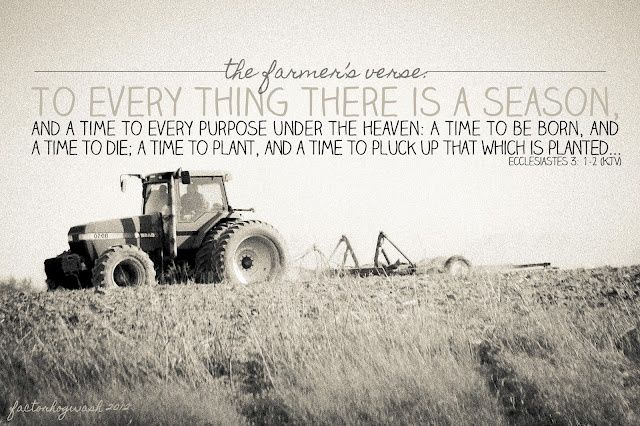 Ecclesiastes 3:1-2. this would be a neat verse in vinyl with pics from harvest/planting season around it