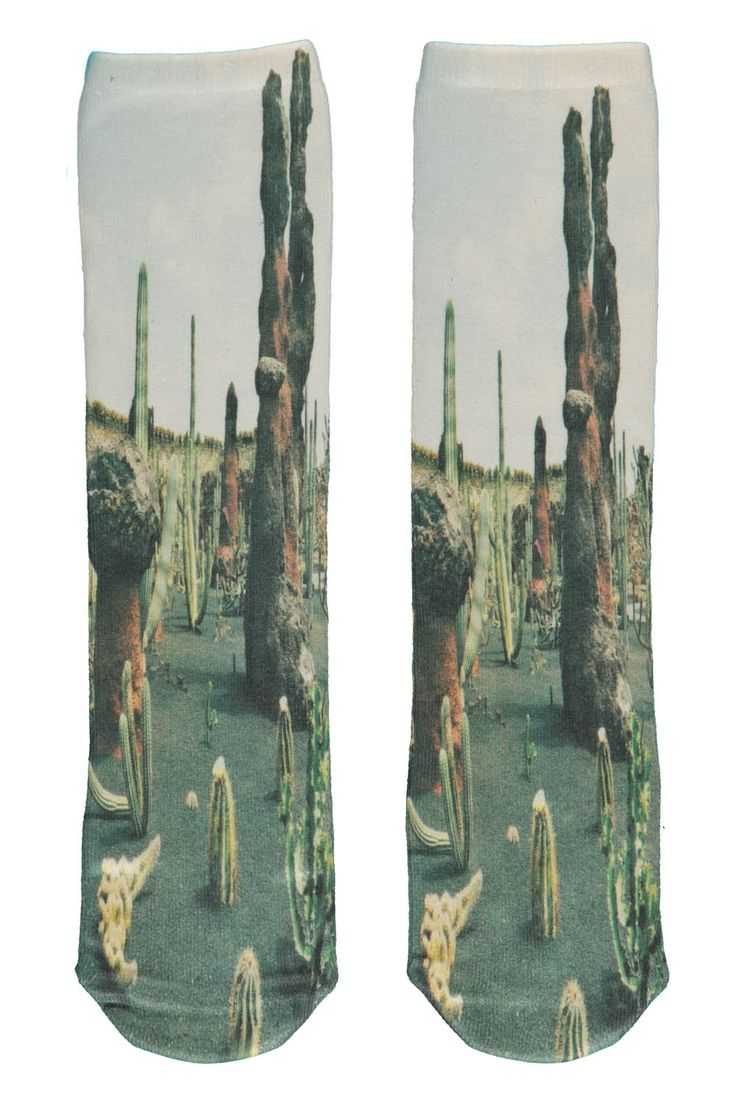 Our Brands :: Popupshop :: Socks 2 pairs together Cactus & Tiger -