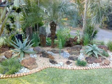 Garden Ideas Cape Town 15 best indigenous images on pinterest | south africa, aloe and