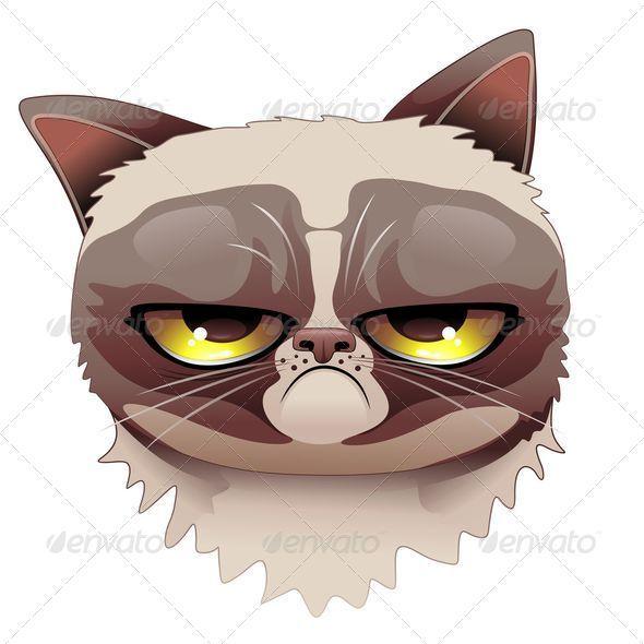 1000 images about grumpy cat on pinterest grumpy cat