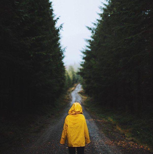 """""""Разум бессилен перед криком сердца""""  © Альбер Камю"""