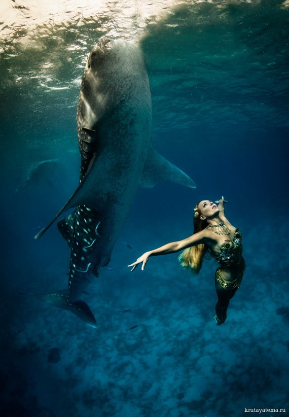 Two days more and I'll be swimming with the whale sharks too wooohoooo. Maldives here I come.