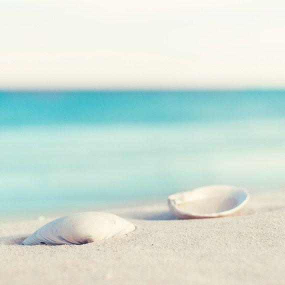 "Nautical Photography - beach photography summer aqua blue ocean photography sea shells coastal wall art - 12x12 Photograph, ""Serenity"""