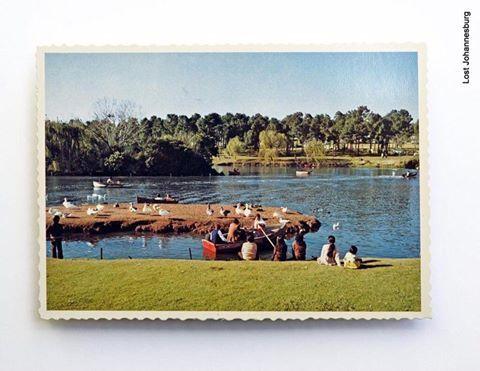 Zoo Lake, Parkview.