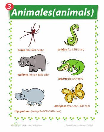 Zoo Animals in Spanish | Learning Spanish | Pinterest | Spanish ...