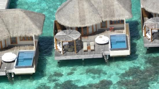 W Retreat & Spa/overwater bungalows
