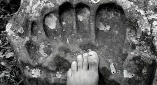Der katholische Priester Carlos Vaca aus Ecuador hütete jahrzehntelang die Überreste eines menschlichen Skeletts von immenser Größe. Die meisten dieser Knochenfragmente stammten aus der Gegend von …