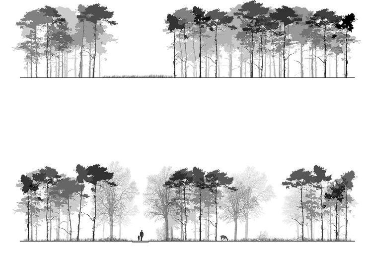 DELVA Landscape Architects (Project) - Oppervlakteberging en Landschapspark, Dessel - PhotoID #297206 - architectenweb.nl