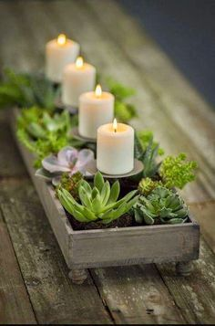 Succulents ~ CP with candle holders and succulents contained in an old wooden box.