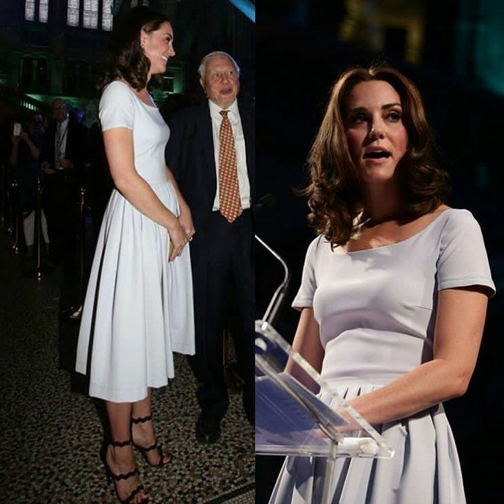 The Natural History Museum is a favorite of Kate and George's and now a favorite of Charlotte's Kate reveled tonight. #katemiddleton  via ✨ @padgram ✨(http://dl.padgram.com)