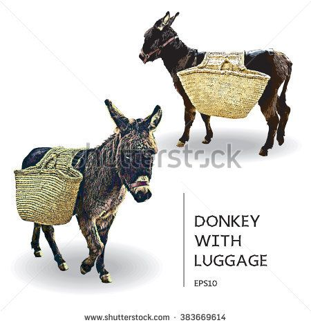 Two Donkeys with luggage. Color Vector Illustration.