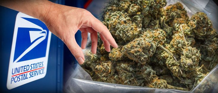 How And Why The United States Postal Service Is Stealing Your Weed via @greenrushdaily