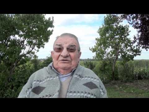 A quelques jours de vendanges, rencontre avec Robert Laydis, viticulteur exploitant du Château Roc de Calon (Montagne Saint-Emilion) de 1973 à 1987