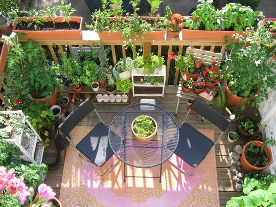 my great outdoors casis lush garden and dinner deck - Tiny Patio Garden Ideas