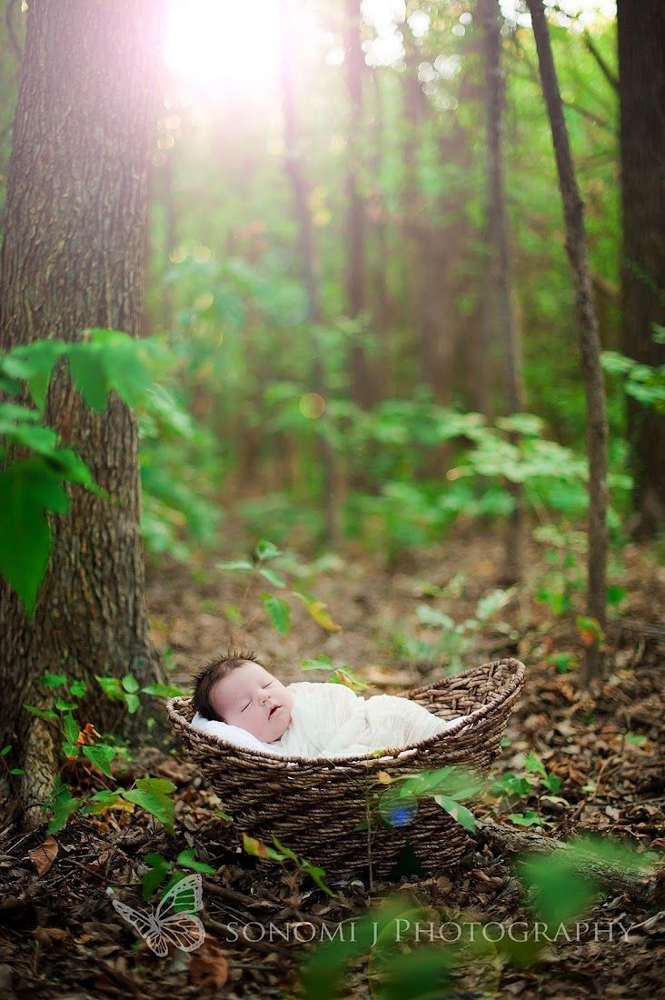 a child left alone in the woods and the Old Ones smiled at the story about to begin