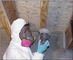Mold removal Miami Lakes Specialist companies actually prefer to have this to follow and will do so if you provide it to them. It helps save costs by minimizing the work that needs to be done and make sure your home or business does indeed get back to normal conditions.  More Details: http://miamimoldspecialist.com