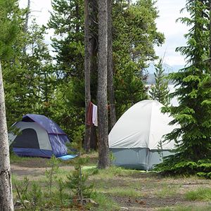 Best Campgrounds in Yellowstone